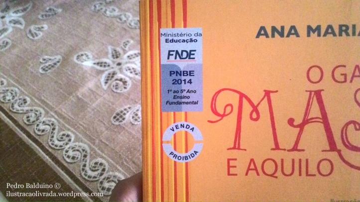 Selo do FNDE/PNBE, programa que tornava o Governo Federal, através do MEC, o maior aquisitor único de livros impressos do país, e que hoje, infelizmente, não existe mais.